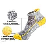 Mens Low Cut Ankle Athletic Socks Cotton Mesh