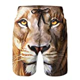 Life Like Lion Cool Male Sweatpants 8.82oz 2017 Summer