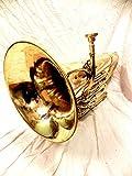 Euphonium Brass Polish 3 Valve euphonium & Mouth