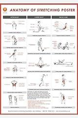 Stretching Wall Chart Stationery