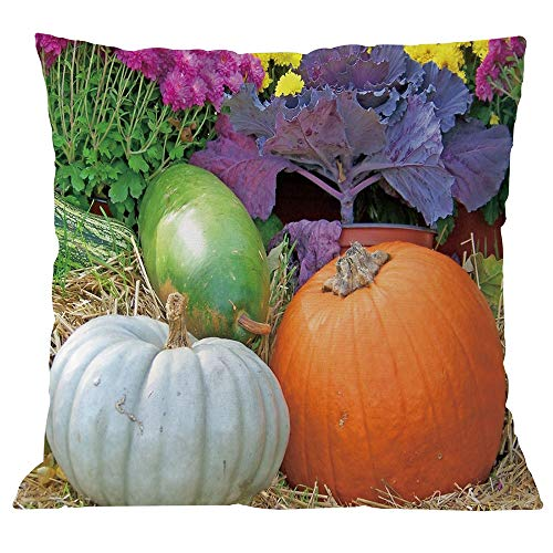 Pillow Covers Halloween Embroidered Pillowcases Decorative Throw Cushion Covers for Thanksgiving Fall Christmas Birthday Boys]()