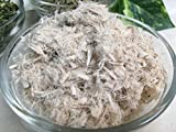 Organic Slippery Elm Bark ~ 2 Ounces ~ Ulmus rubra