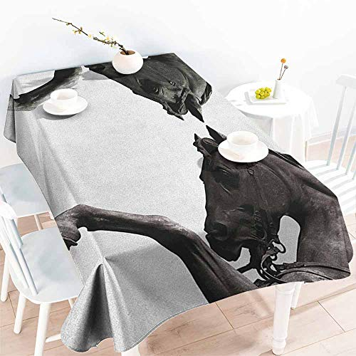 (EwaskyOnline Washable Tablecloth,Sculptures Twin Contrast Horse Heads Statue Image Vintage Style Abstract Art Antique Theme,Resistant/Spill-Proof/Waterproof Table Cover,W50x80L, Bronze)