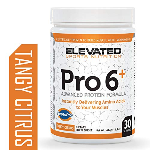 Pro6 Essential Amino Acids Supplement by ESN, Tangy Citrus, 30 Servings Intra Workout Booster with All 20 Essential Amino Acids, 6gr of Protein, and Coconut Water Extract for 3X Faster Absorption