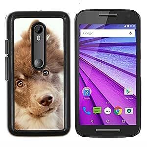 Caucho caso de Shell duro de la cubierta de accesorios de protecci¨®n BY RAYDREAMMM - Motorola MOTO G3 3rd Gen - Retriever Mutt Mestizo perro Terrier