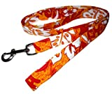 Beach Dog Pacific Pet Leash, 1-Inch by 6-Feet, Orange, My Pet Supplies