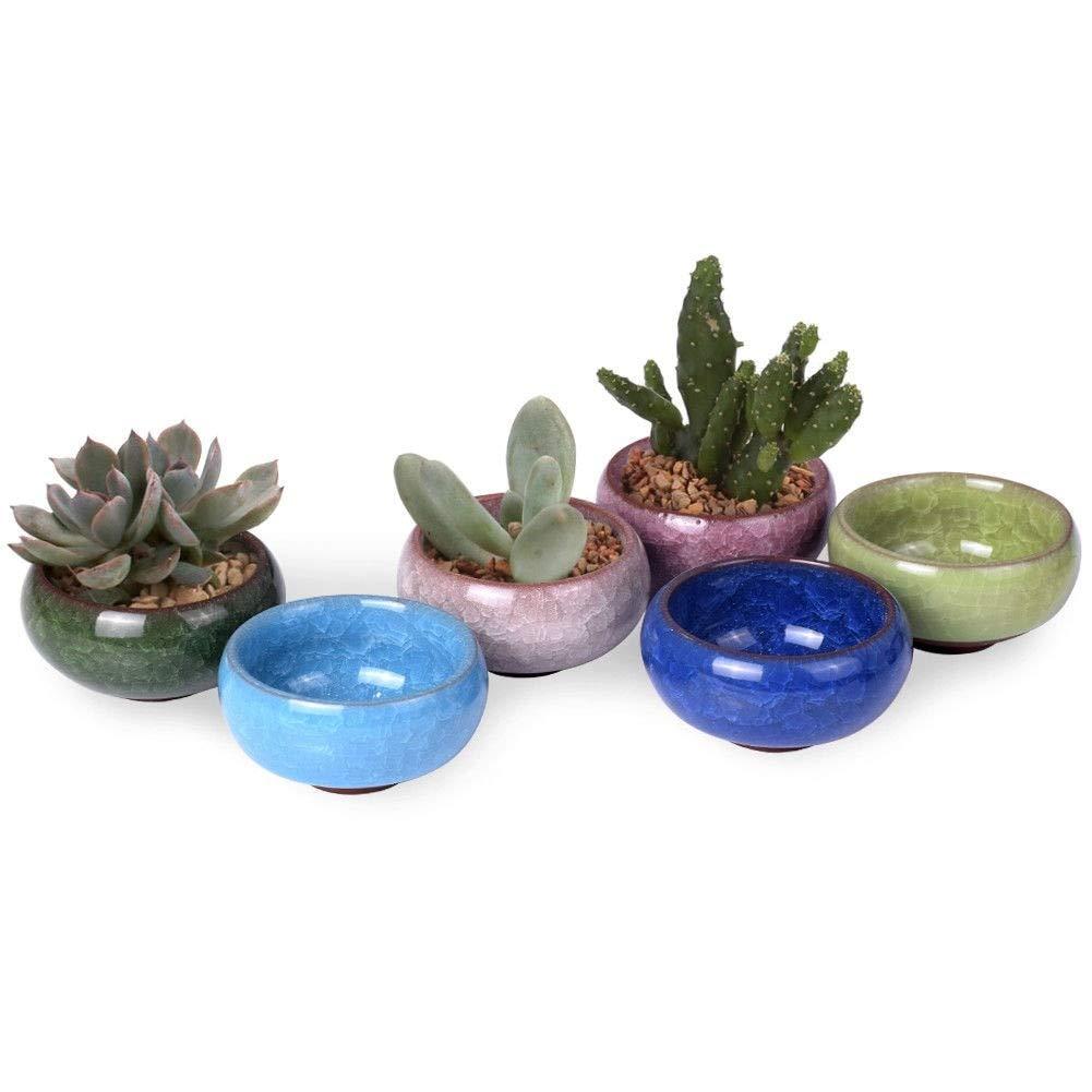 Gold Happy Succulent Flower Mini Plant Flowerpot Ice-Crack Garden Pot Glaze Ceramics by Gold Happy