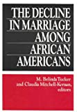 The Decline in Marriage among African Americans : Causes, Consequences and Policy Implications, , 0871548879