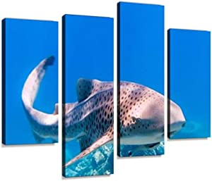 Rare Close up Encounter with Endangered Species Zebra Leopard Shark Canvas Wall Art Hanging Paintings Modern Artwork Abstract Picture Prints Home Decoration Gift Unique Designed Framed 4 Panel