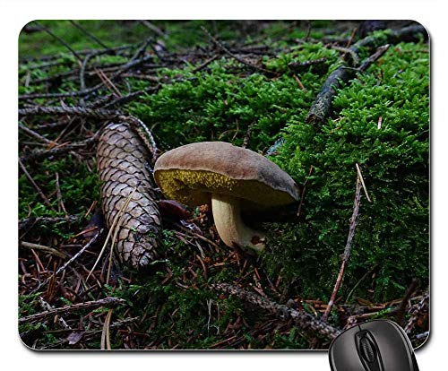 Mouse Pad - Mushroom Forest Pine Cones Moss Branches Tap