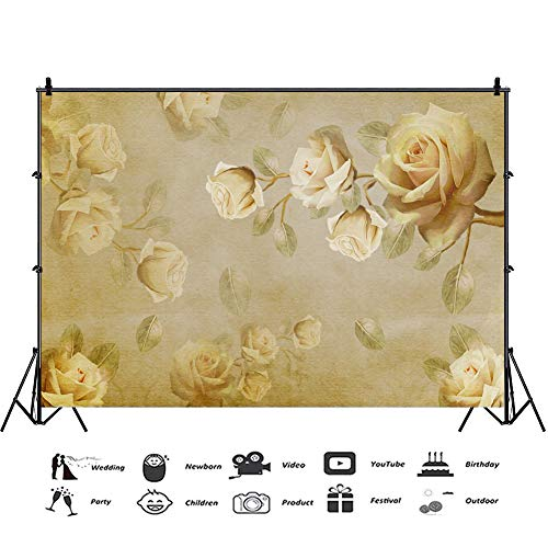 Baocicco 12x8ft Plain Backdrop Vintage Background Light Yellow Rose Texture Photography Background Wallpaper Decor Valentine's Day Wedding Ceremony Birthday Party Girls Adults Portrait ()