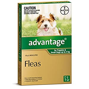 Advantage Flea Treatment for Puppies and Small Dogs, Green, 1 Pack Click on image for further info.