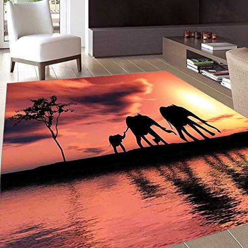 Rug,FloorMatRug,Elephants Decor,AreaRug,Elephant Silhouettes by a River Africa Animals Wildlife Adventure Landscape,Home mat,5'8