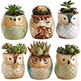 Sun-E 2.5 Inch Owl Pot Ceramic Flowing G...