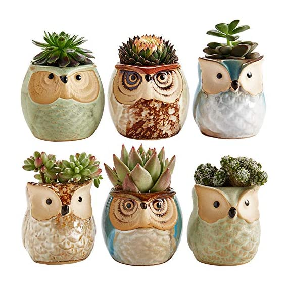 Sun-E 2.5 Inch Owl Pot Ceramic Flowing Glaze Base Serial Set Succulent Plant Pot Cactus Plant Pot Flower Pot Container Planter Bonsai Pots with A Hole Perfect Gift Idea 6 in Set 1 New SUN-E collections!OWL OWL OWL!!!Ideal for adding a dash of refreshingly modern design to your home,Great Gift - this ceramic pot can serve a variety of purposes. Perfect gift for family and friends who love succulent plants with a green thumb or keep it in your own home for a touch of clean, modern style in your living space. Material:Ceramic(Made of top-quality clay and baked in high temperatures);Package content:6pcs*Pot. Approximate Size: 2.2 x 2.2 x 2.4 inch (L x W x H).