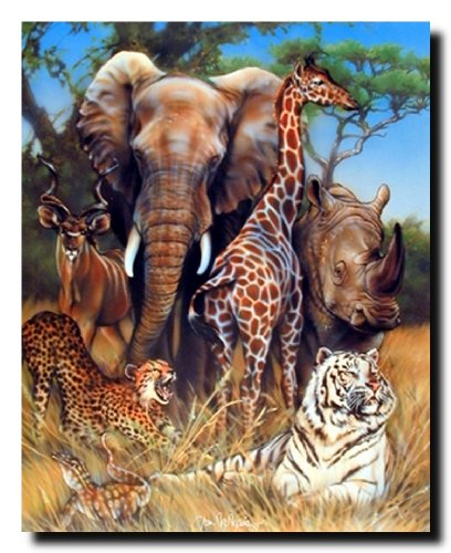 Zoo Exotic Collage (Giraffe, Rhino, Elephant And Tiger) African Safari Animal Art Print Poster (16x20)]()
