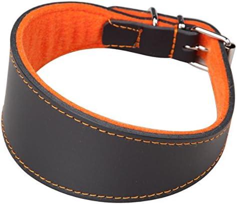 Arppe 2154015011 Collar Galgo Cuero Superfelt Negro y Morado