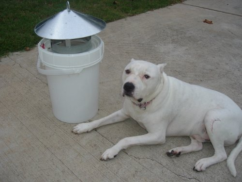 port-a-bucket-poop-lid-dog-waste-container-see-ebay