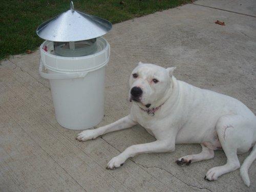 port-a-bucket-poop-disposal