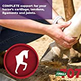 Formula 707 Joint 6in1 Equine Supplement, Daily