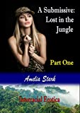 Kate and Jasmine arrive in Maroua, in the North Region of Cameroon, having journeyed by air, from London. Jasmine's family is from the area, but with still a way to go they decide to break their journey. They stay the night in a hotel, but an alterca...