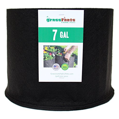 Pack Gallon Black Grassroots Fabric product image
