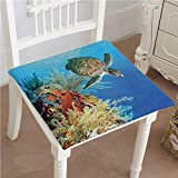 Mikihome Outdoor Chair Cushion Underwater with Swimming Among The Reef Scenic View Comfortable, Indoor, Dining Living Room, Kitchen, Office, Den, Washable 22''x22''x2pcs