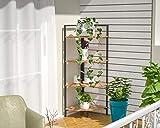 Saygoer Corner Storage Shelf Irregular Plant Stand