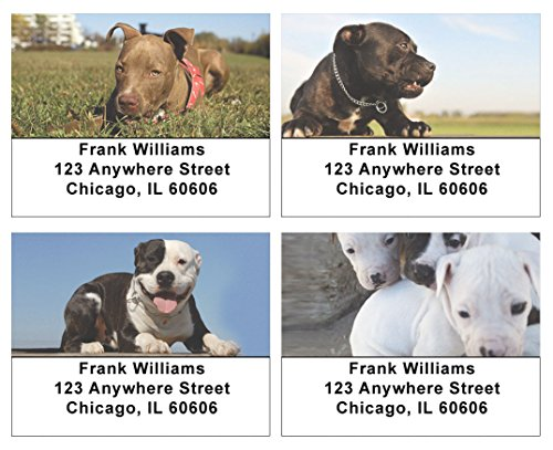 Pitbull Puppies Address Labels (Dog Address Labels)