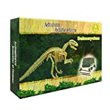 GYXL - Dinosaur Fossil Dig kit, Outdoor Dinosaur Toys, Child Science kit, Dinosaur Bones, Great Science, Archaeology, paleontology Gifts for Boys and Girls, dig kit,DIY Dinosaurs. (Deinonychus)