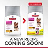 Hills Science Diet Adult Small & Toy Breed Dog Food, Chicken Meal & Rice Recipe Dry Dog Food, 15.5 lb Bag