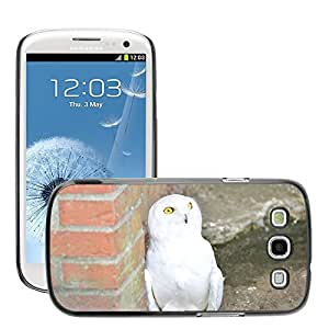GoGoMobile Slim Protector Hard Shell Cover Case // M00124406 Snowy Owl White Owl Animal Bird // Samsung Galaxy S3 S III SIII i9300