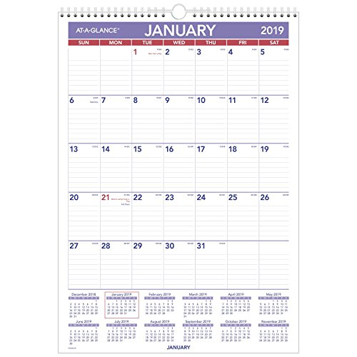 AT-A-GLANCE 2019 Monthly Wall Calendar, 12 x 17, Small, Wirebound, Erasable, Dry Erase (PMLM0228)