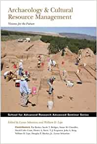 Archaeological Reports Archive