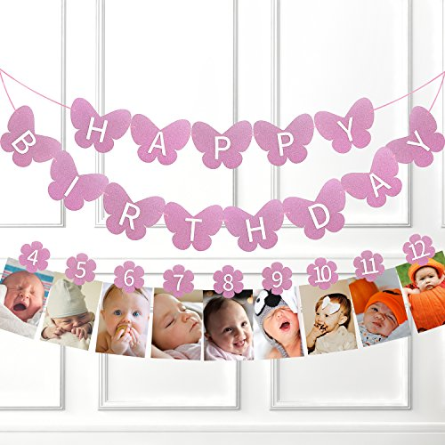 1st Happy Birthday Glitter Decorations-Purple Butterfly 3D Birthday Banner and Flower Monthly Milestone Photo Banner,1-12 month Numbering Photography Garland,Great For Baby Kid 1 Year old (One Year Old Birthday Party)