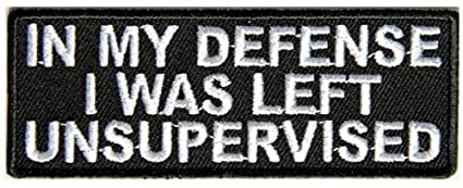 In My Defense I Was Left Unsupervised Embroidered Iron-On Patch - 4x1.5 inch