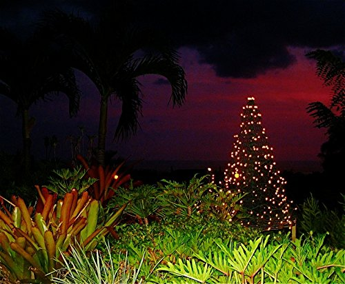 5 ft. Indoor/Outdoor Pre-Lit LED Artificial Christmas Tree with Green Frame and 280 Multi-Color Lights by Crab Pot Trees (Image #4)