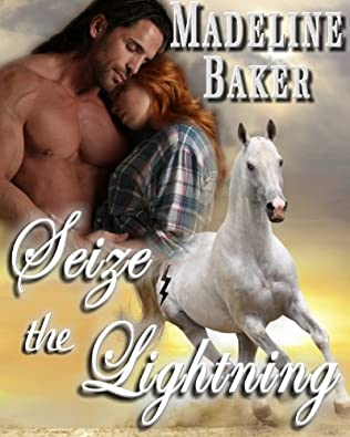book cover of Seize the Lightning