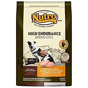 Nutro High Endurance Dry Dog Food