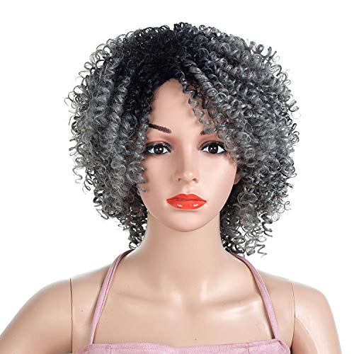 Numberus Kinky Curly Natural Short Afro Wig Black to Silver Grey Ombre Color Synthetic Heat Resistant Fiber Hair for Women -