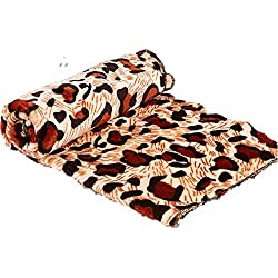 WSERE Dog Cat Pet Bed Cover Blanket Soft Fluffy Coral Fleece Comforter for Indoor and Outdoor Use Mat(Style E)