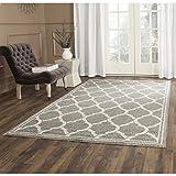 Safavieh Amherst Collection AMT415R Dark Grey and Beige Indoor/Outdoor Area Rug (9′ x 12′) Review