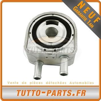 Radiador Enfriador de aceite Citroen Fiat Peugeot Suzuki: Amazon.es: Coche y moto