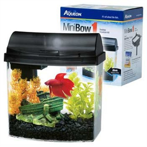 Aqueon 1-Gallon Mini Bow Aquarium Kit, Black