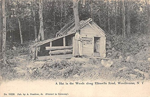 Hut in the Woods along Ellenville Road Woodbourne, New York, - Hut State