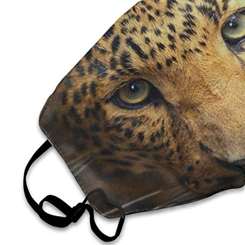 Dust Mask Funny Leopard Animal Print Face Mask Cover Anti-dust Reusable Windproof Half Face Mouth Warm Masks for Ski Bicycle Cycling Motorcycle Women Men