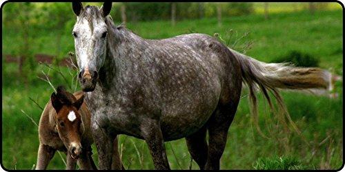 L.Z.Y horse stallion cub Logo Mouse Pad 600x300x4mm(23.62x11.80x0.16inch) High Sensitivity Waterproof - Logo Stallion