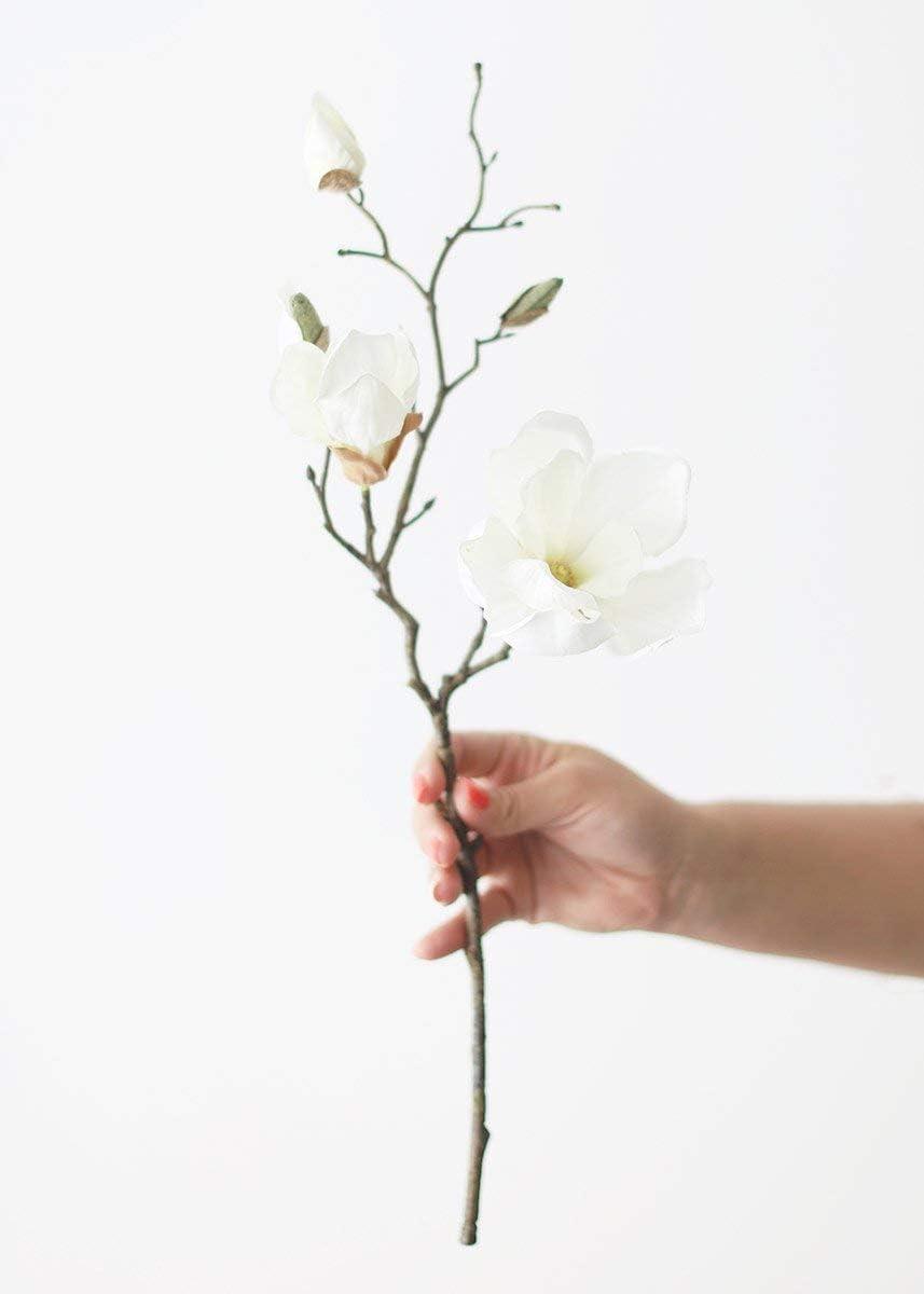 Afloral Silk Magnolia in Cream White - 19