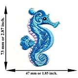 Powerwarauto Blue Seahorse Sea Horse Ocean Fish