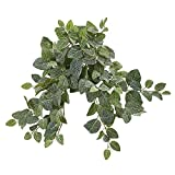 """Nearly Natural 20"""" Fittonia Artificial Hanging"""